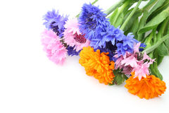 Bouquet of cornflowers and calendula Stock Images