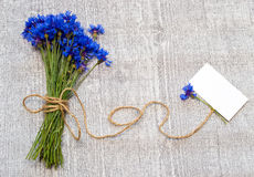 Bouquet of cornflowers. Stock Photo