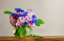 Bouquet of cornflowers and sweet peas in glass vase. On wooden table, gray wall, free space stock photos