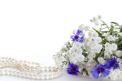 Bouquet of cornflowers. Stock Photos