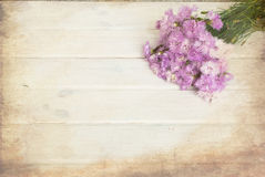 Bouquet of cornflowers on a white wooden background Stock Images