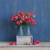 Bouquet of crimson roses on blue Stock Image