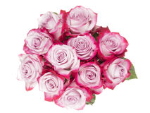 Bouquet of crimson roses Royalty Free Stock Photo