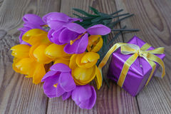 Bouquet of crocuses and gift box Stock Images