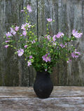 Bouquet d'été des fleurs de mauve de rose trémière Images stock