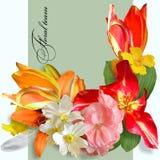 Bouquet d'été sur le fond vert Photos stock
