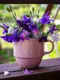 Bouquet d'ancolie de fleurs photos libres de droits