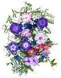 Bouquet d'application des fleurs sèches photos libres de droits