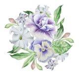 Bouquet d'aquarelle avec des fleurs pétunia pensées Images stock
