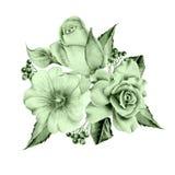 Bouquet d'aquarelle avec des fleurs Rose sorbe Illustration photo libre de droits