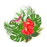Bouquet d'arrangement floral avec les fleurs tropicales avec de beaux lis Cala et vintage VE d'anthure, de paume, de philodendron Photo stock