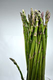 Bouquet d'asperge Photos stock