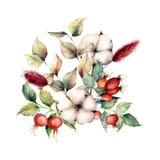 Bouquet d'automne d'aquarelle avec des fleurs et des plantes Les dogroses peints à la main, coton fleurit, lagurus, feuilles et b illustration libre de droits