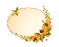 Bouquet d'automne des feuilles et des glands Photographie stock libre de droits