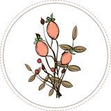 Bouquet d'Autumn Branches illustration de vecteur
