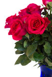 Bouquet d'haut étroit de roses roses foncées Images libres de droits
