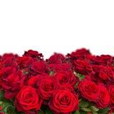 Bouquet d'haut étroit de roses rouge foncé Image stock