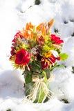 Bouquet d'hiver Images libres de droits