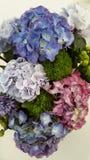 Bouquet d'hortensia photos libres de droits