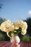 Bouquet d'hortensia des fleurs dans une cruche blanche Images libres de droits