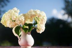 Bouquet d'hortensia des fleurs dans une cruche blanche Photo stock
