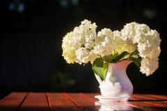 Bouquet d'hortensia des fleurs dans une cruche blanche Photographie stock