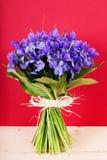 Bouquet d'iris de fleurs Image stock