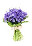 Bouquet d'iris de fleurs Image libre de droits