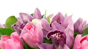 Bouquet d'orchidée et de tulipes Images libres de droits