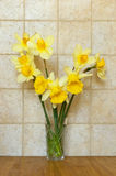 Bouquet of daffodils Stock Images