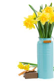 Bouquet of daffodils in blue vase Stock Photos
