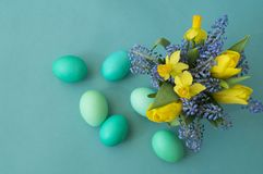 Bouquet of daffodils, tulips and Muscari.Easter. Easter eggs are blue and turquoise. royalty free stock photography