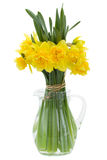 Bouquet of daffodils Stock Photo