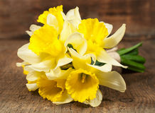 Bouquet of daffodils. On a wooden background Stock Image