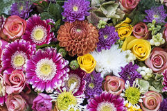 Bouquet with dahlia and aster Stock Photos