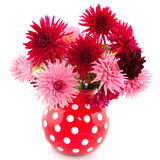 Bouquet of Dahlias. Cheerful bouquet in vase with red and pink Dahlias Royalty Free Stock Photo