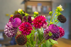 Bouquet of dahlias. The beautiful bouquet of dahlias in a vase on the table royalty free stock image
