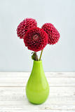 Bouquet of dahlias Royalty Free Stock Photography