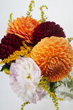 Bouquet of dahlias Stock Photos