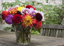 Bouquet of dahlias Stock Image
