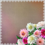 Bouquet of dahlias on vintage background Royalty Free Stock Photography