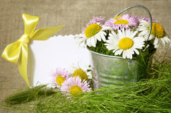 Bouquet of daisies in a bucket and a card Stock Images
