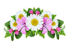 Bouquet with daisies and field bindweed flowers. Isolated on white Stock Image