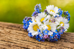 Bouquet with daisies and forget me not Stock Photos