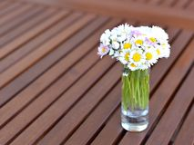 Bouquet of daisies. A bouquet of daisies in a glass vase Stock Image