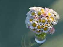 Bouquet of daisies on green background. A bouquet of daisies in a glass vase on green background Stock Photos