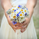 Bouquet of daisies in hands of bride Stock Image