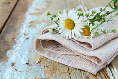 Bouquet of daisies on the linen bag Stock Photos