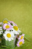 Bouquet of daisies in a metal bucket Royalty Free Stock Photo