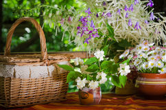 Bouquet of daisies in a pot on the table for a picnic Royalty Free Stock Image